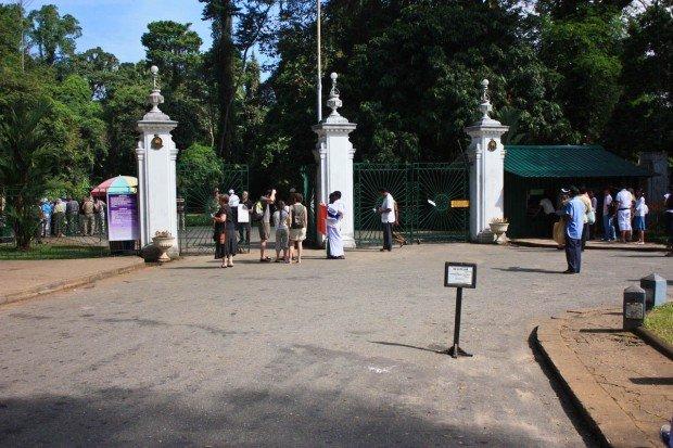 Королевский Ботанический сад Перадения